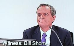 Bill Shorten RC