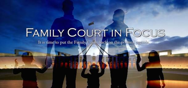 family-court-in-focus-2015