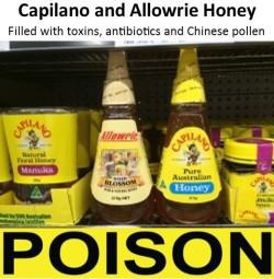 capilano-honey